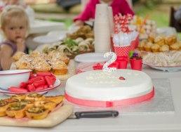 Birthday Party-2